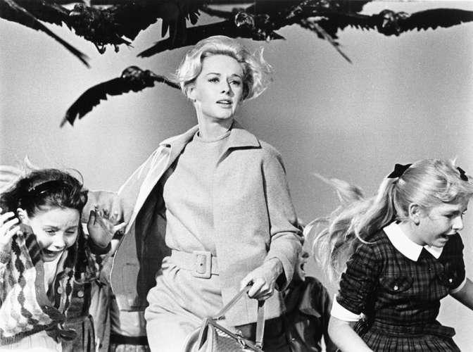 Os Pássaros, de Hitchcock